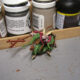 Skaven Screaming Bell Painting IX