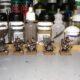 Skaven Stormvermin Painting XIX