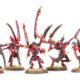 Showcase: Tyranid Lictors