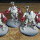 WIP: Adeptus Mechanicus Kastelan Robots #1