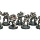 Showcase: Silver Skulls Primaris Kill Team